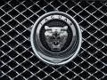 Jaguar: инстинкты разумных хищников