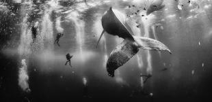 Победители конкурса National Geographic Traveler Photo