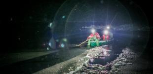 Волонтеры из Kyiv Animal Rescue Group спасали замерзающих лебедей