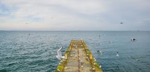 Море у берегов Одессы успокоилось: люди вышли гулять на Ланжерон