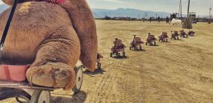 Безудержный креатив: фестиваль Burning Man 2018