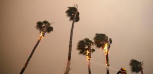 Калифорния горит: штат охватили сильнейшие за 85 лет пожары