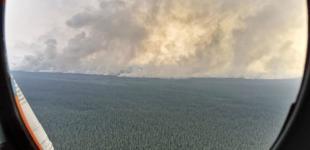 Лесные пожары в Сибири: города в дыму, тайга в огне