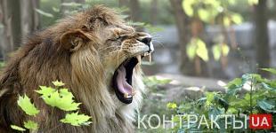 Узники зоопарка - 2