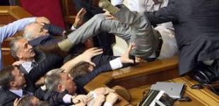Депутаты подрались из-за языка