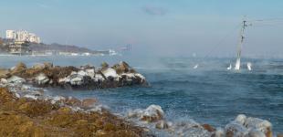 Морозы в Одессе: парящее море, обледеневшие пирсы и утиные стаи