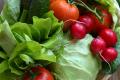 Превышение нитратов в ранних овощах обнаружили на рынках Буковины