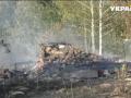 В Житомирской области масштабный пожар уничтожил дачи и 100 гектаров леса