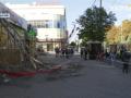 В центре Кропивницкого на женщину рухнуло дерево