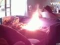 В Мельбурне щенок сжег хозяйский дом