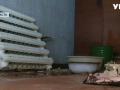 В Черкасской области полгода не могут найти деньги на ремонт обвалившейся крыши