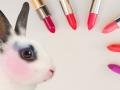 В Украине запретят тестировать косметику на животных