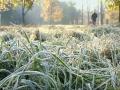 В Украину идут похолодание и заморозки: вторгнется арктический ветер