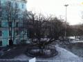 Самые старые и мистические деревья Киева и области: где находятся и какую удачу приносят