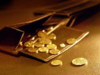 Отечественные налоговики отпугивают иностранных инвесторов