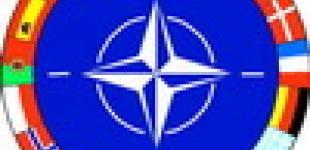 Сколько стоит членство в НАТО для Украины?