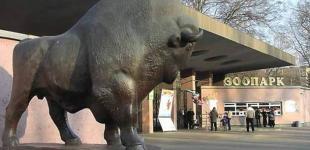 Киевский зоопарк «переселит» скульптуры у входа