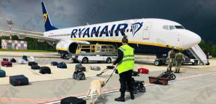 США сделали заявление в ОБСЕ о принудительной посадке Ryanair в Минске