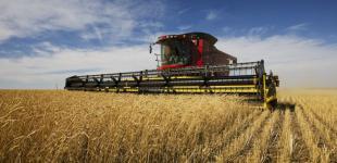 Средняя зарплата в сельском хозяйстве в 2017 году выросла на 47% - Минагро