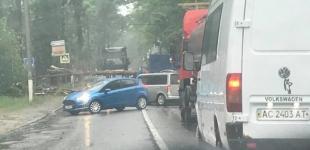 В Киеве и области сильный ветер валил деревья