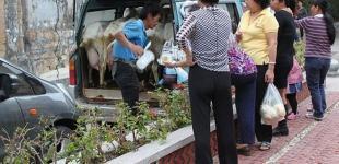 Экспорт молока в Китай: кого из украинских производителей готовы видеть на этом рынке