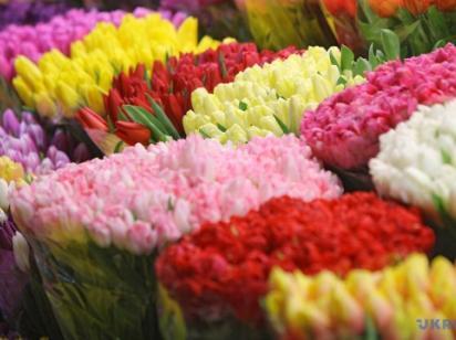 Сегодня 8 марта - Международный женский день