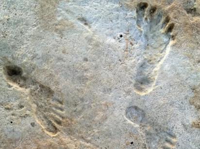 Обнаружены самые ранние следы человека в Северной Америке - им 23 тысячи лет