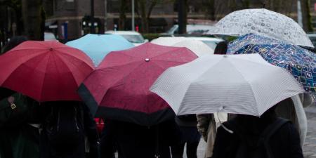 На выходных придет похолодание с заморозками, дождями и сильным ветром