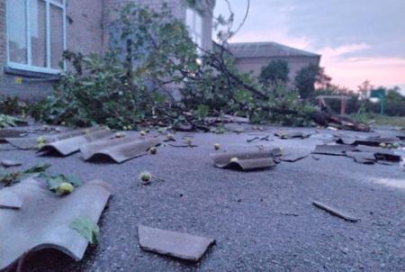 Ураган в Запорожской области поднимал в воздух крыши и вырывал деревья