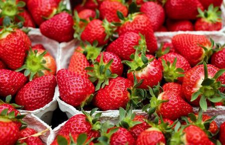 В Украине начинается сезон клубники: цены на ягоду рухнули втрое
