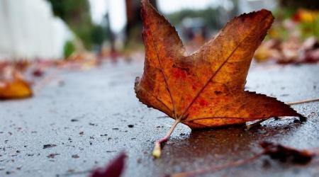 Погода на 13 сентября: в Украине последние теплые дни, ночью похолодает