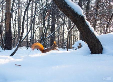 Синоптик рассказала, как долго в Украине продержится холодная погода