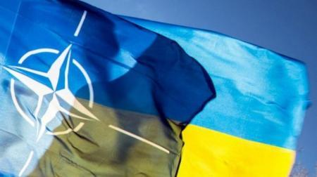 Решение о вступлении Украины и Грузии в НАТО было подтверждено на самом высоком политическом уровне в Альянсе - замгенсека НАТО