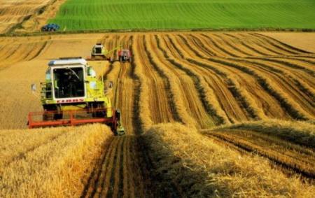 Аграрии призвали Порошенко не вводить санкции против иностранных производителей минудобрений