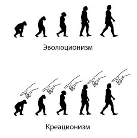 «Креационисты» против «эволюционистов». Пример бессмысленной дискуссии