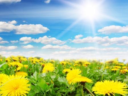В Украину придет весенняя жара