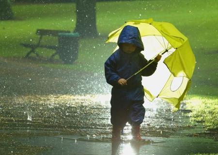 Дожди, град и шквалы: прогноз погоды в Украине на четверг, 10 июня