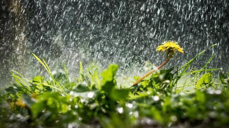 2e16019-may-rain_11.05.21