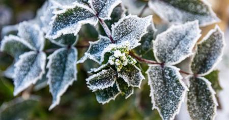 Зимняя погода в Украине продлится недолго: синоптик сказал, когда придет потепление
