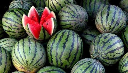 Как отличить нитратный арбуз