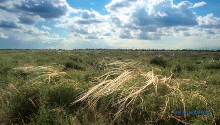 За 10 лет климатические зоны в Украине сдвинутся с юга на север на 150-200 километров - экологи