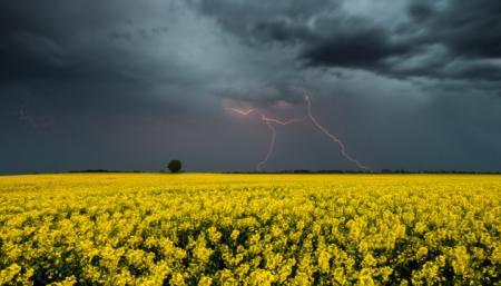 В Украине прогнозируют жару до +30°, но с грозами