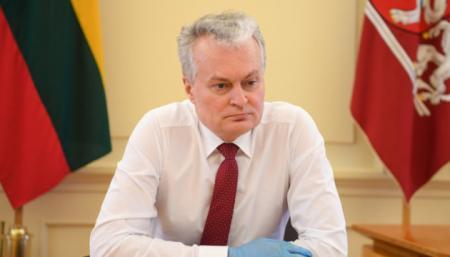 Президент Литвы призвал ЕС и НАТО отреагировать на задержание Протасевича в Минске