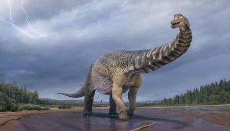 Ученые классифицировали новый вид динозавра - одного из самых больших, что жили на Земле