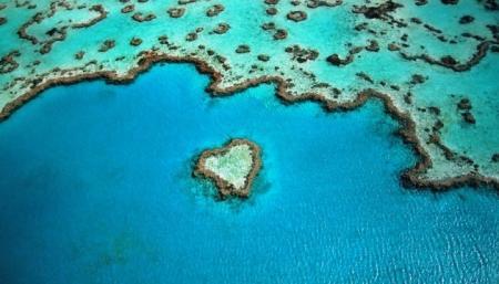 Большой Барьерный риф в опасности из-за изменений климата - ЮНЕСКО