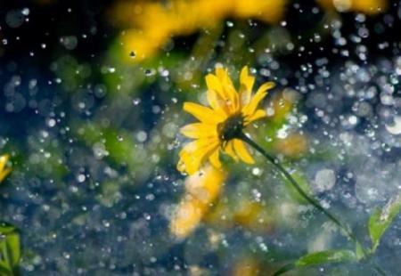 Погода на ближайшие дни: будет жарко, но пройдут грозовые дожди