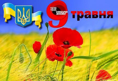 """Наблюдатели ОБСЕ зафиксировали 7 мая более 100 взрывов ракет от """"Градов"""" в районе Широкино, - отчет - Цензор.НЕТ 6184"""