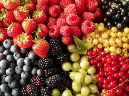 Украина втрое увеличила экспорт ягод в Европу за 5 лет