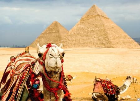 EGIPET_Possia