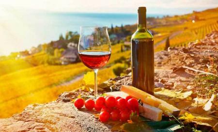 Грузинское вино попало в книгу рекордов Гиннеса